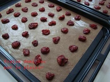 fraise_demi-sec1.jpg